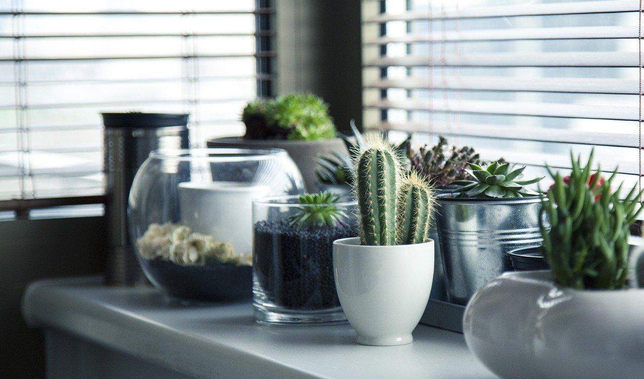 Rolety i okna – 3 elementy, które zapewnią odpowiednią temperaturę i jasność w pomieszczeniu